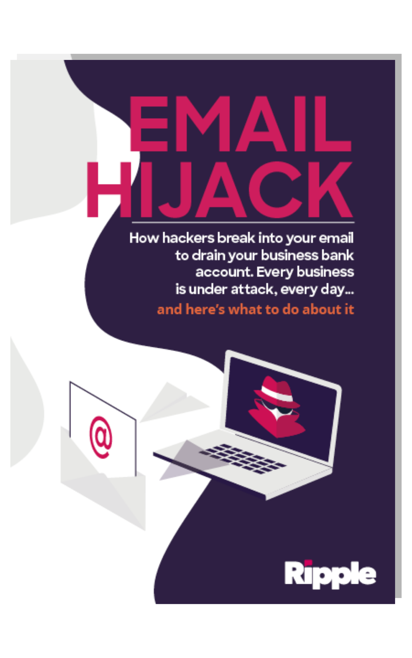 RIPP _ Email Hijack Book Cover (1)